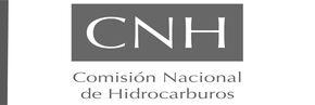cnh_logo2